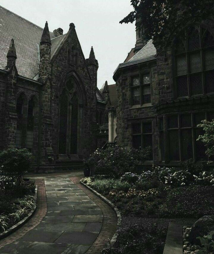 Image About Aesthetic In Dark Academia By J O Brien Potter