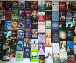 books, firelight, and red queen image