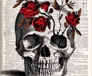 art, skull, and graphic design image
