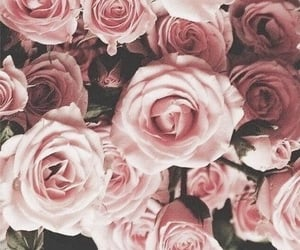 floral, flowers, and floral background image