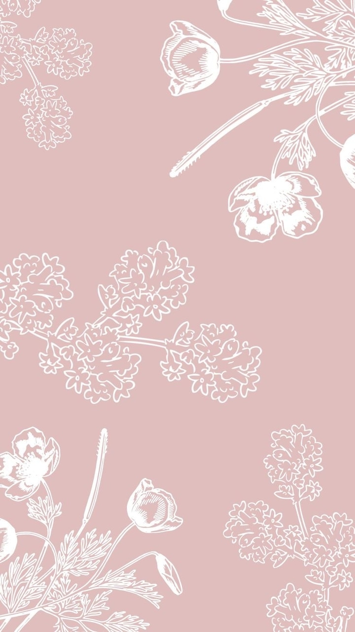 drawings, pink, and white image