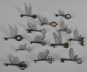 butterfly, keys, and white image