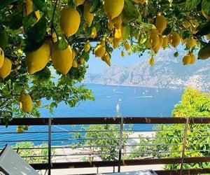 lemon, summer, and italy image