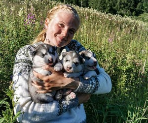 dogs, girl, and puppy image