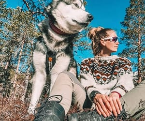 dog, nature, and outdoor image