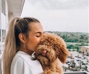 animal, model, and beauty image