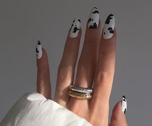 animal print, trendy nails, and black and white image