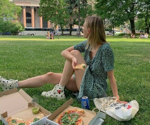 picnic and pizza image