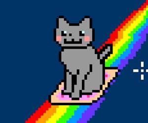 animal, gif, and rainbow image