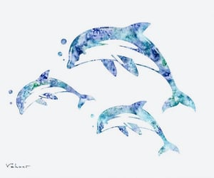 aquarell, dolphins, and inspiration image