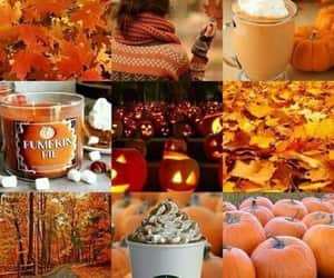 article, pie, and autumn image