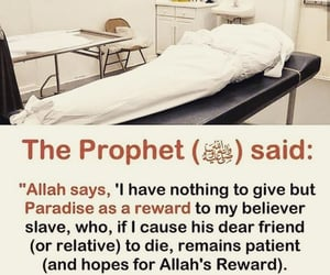 muslim, deen, and islamic reminders image