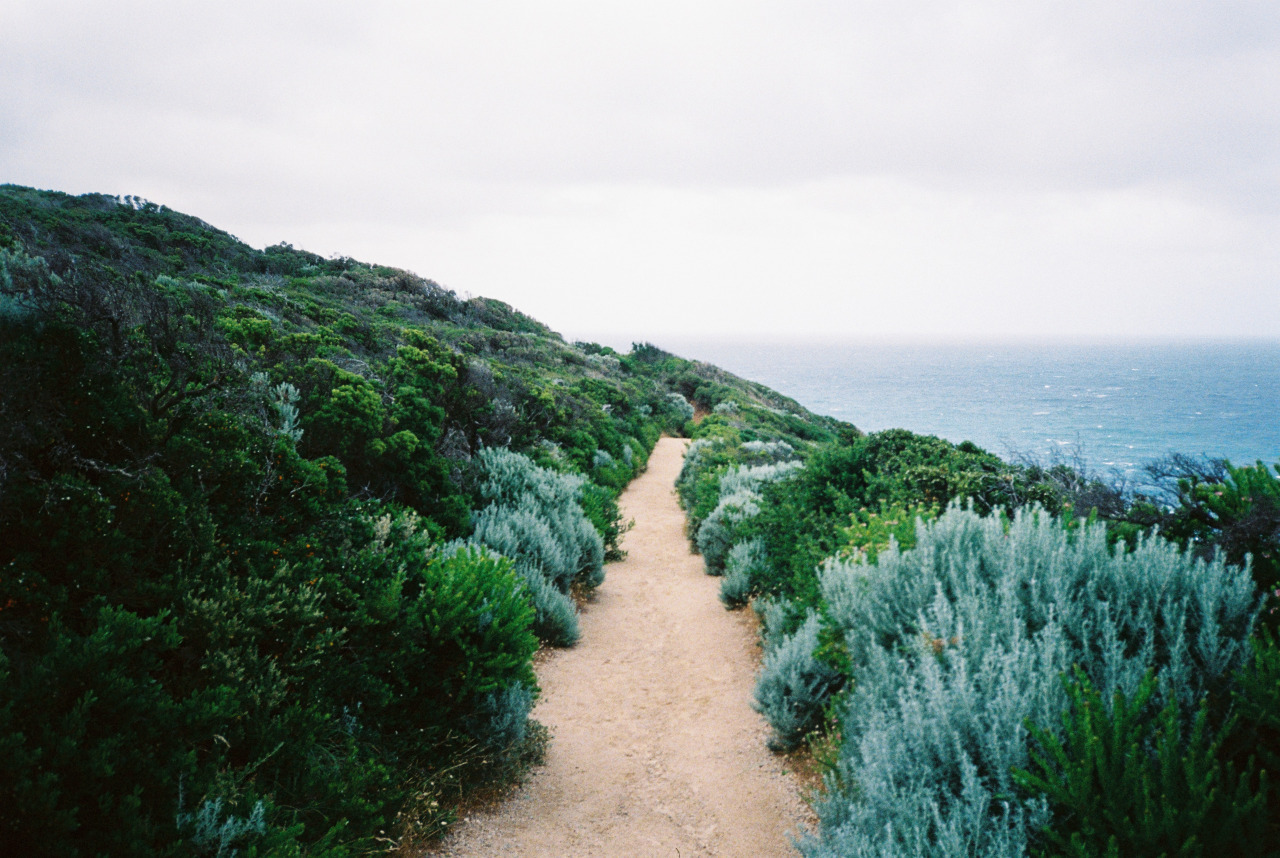 nature, places, and beach image