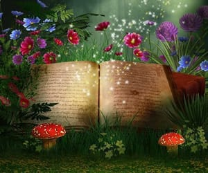 books, enchanted, and Fairies image