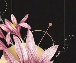 background, dark background, and floral wallpaper image