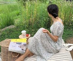 nature and picnic image