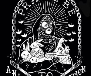 anarchy, animals, and black and white image