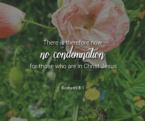 Christ, flowers, and condemnation image