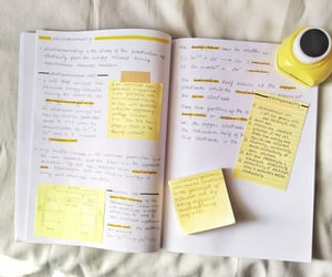 aesthetic, notes, and school image
