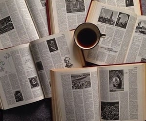 book, aesthetic, and article image