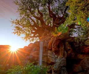 animal, beautiful, and tree image