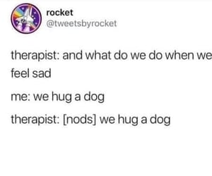 dogs, haha, and therapy image