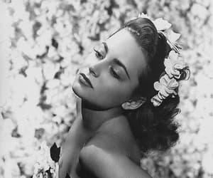 girl, Olivia De Havilland, and pretty image