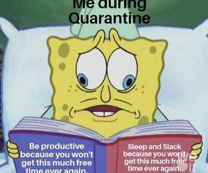 funny, meme, and quarantine image