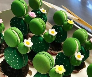 food, macaroons, and cactus image