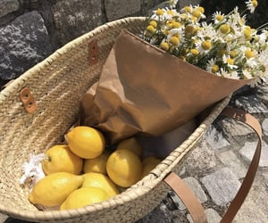 daisies, flowers, and lemons image