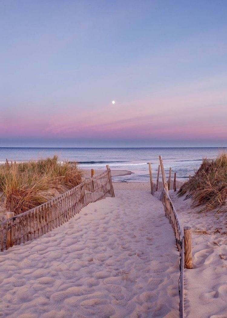beach, sky, and pink image