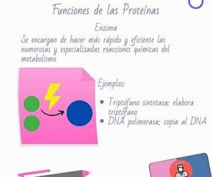 bioquímica, repasemos, and apuntes medicina image