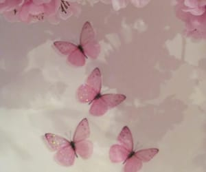 butterfly, pink, and aesthetic image
