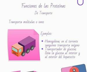apuntes medicina, proteinas, and estudiante aséptico image