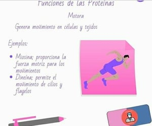 proteinas, estudiante aséptico, and bioquímica image