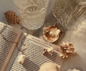 book, aesthetic, and shell image