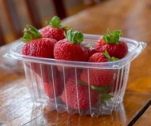 deli containers, 8oz containers, and plastic-free containers image