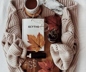 autumn, coffee, and cold image