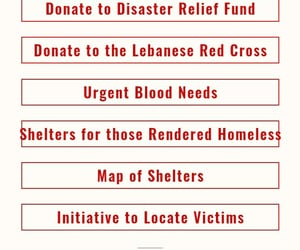 Beirut, help, and support image