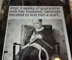 knitting, a scarf, and go gertrude image