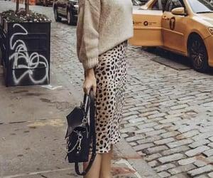 animal print, fashion, and skirt image