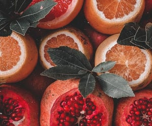 orange, fruit, and pomegranate image