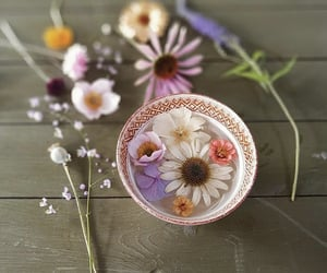 cup, flower, and flower power image