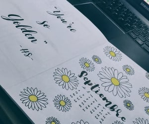 flower, planner, and golden image