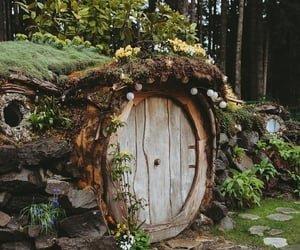 nature, forest, and hobbit image