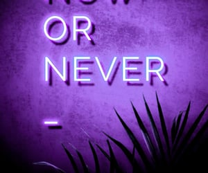 aesthetic, lavender, and neon image