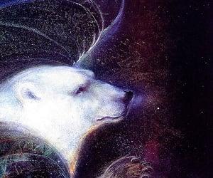 Polar Bear, portals, and enchantment image
