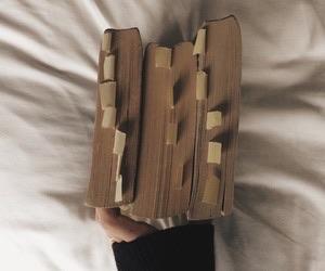 academia, books, and homework image
