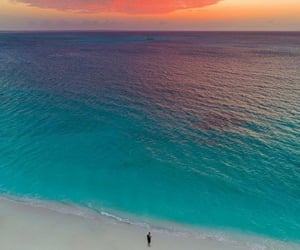 beach, natural, and orange image