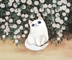 background, cat, and white cat image